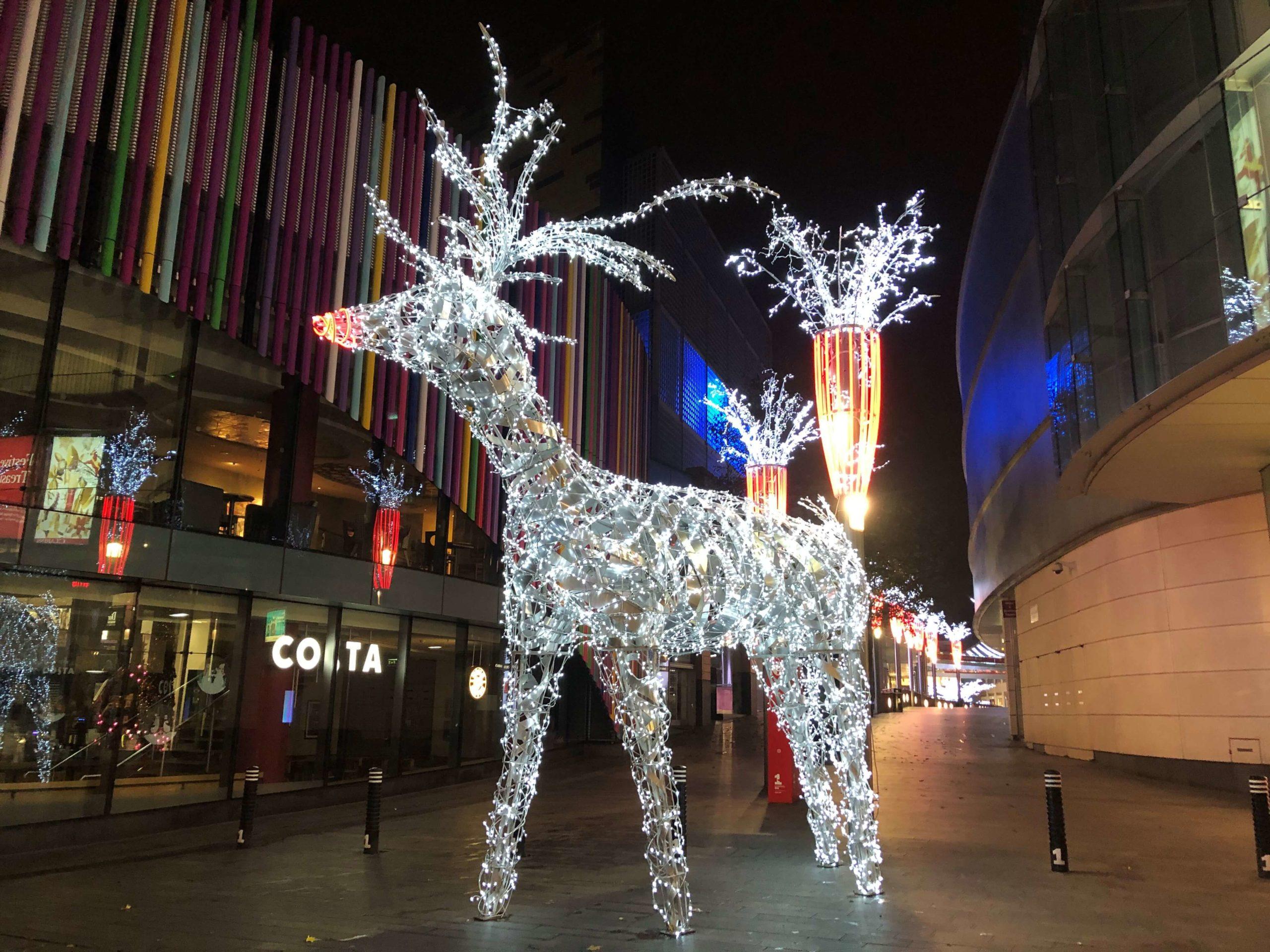 Liverpool Reindeer 2